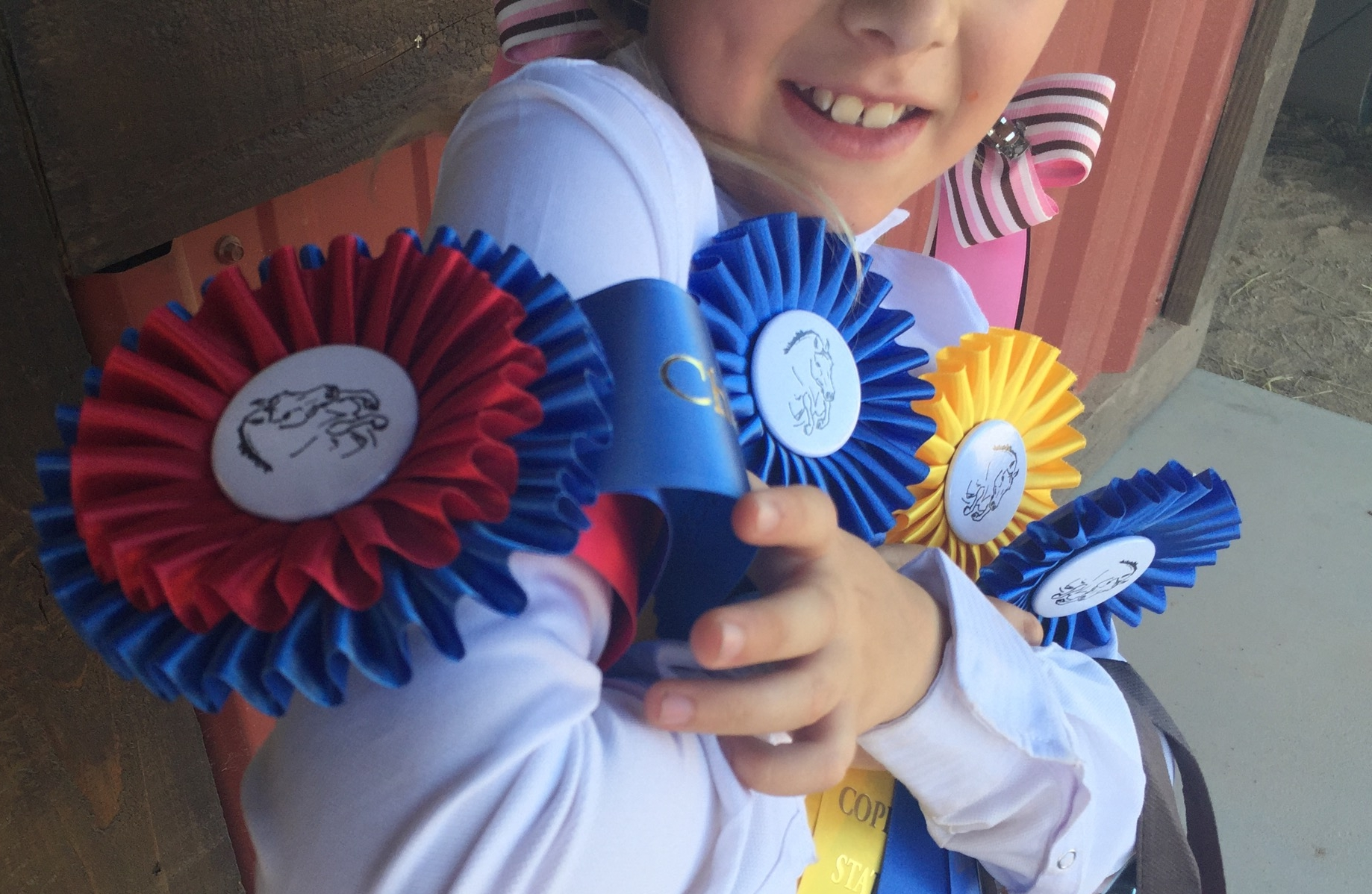 March 29, 2015 Show Results